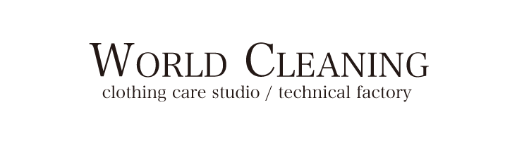 WORLD CLEANING